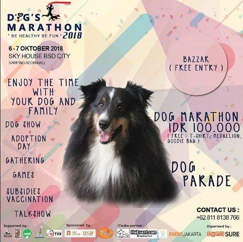 Dog Marathon 2018