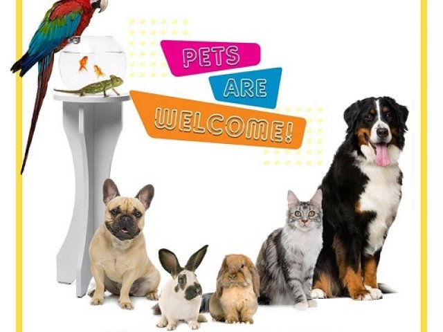Jakarta Indonesia Pet Show