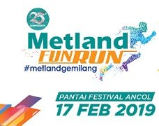 Metland Fun Run 2019